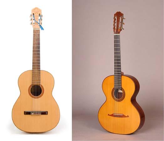 шестиструнная гитара. семиструнная гитара